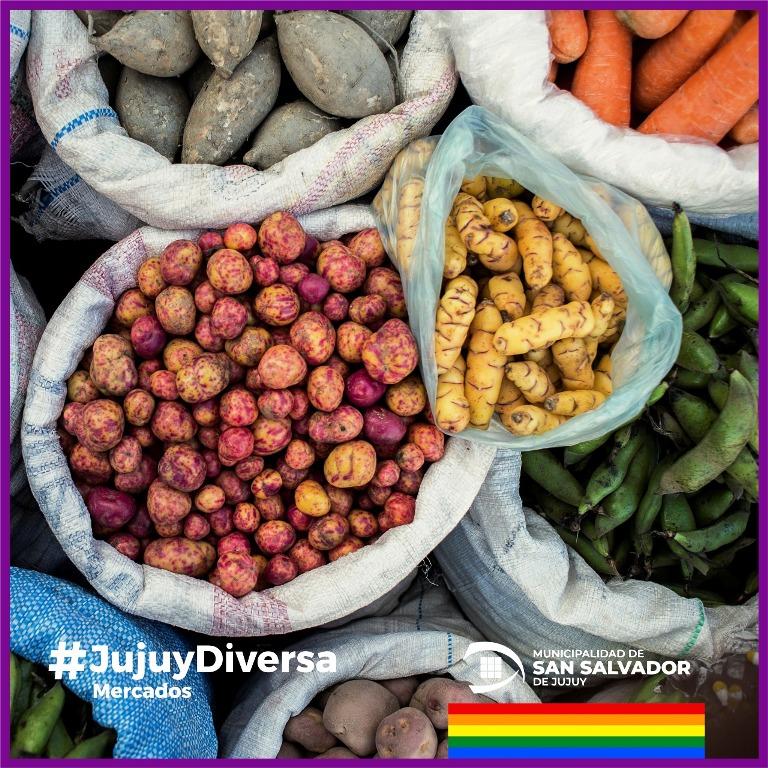 Día Internacional de la Diversidad