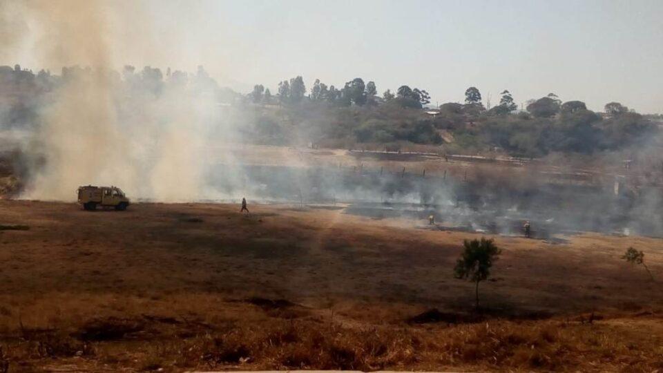 Lograron sofocar un incendio en el parque Belgrano